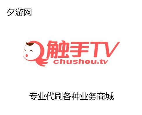 触手直播TV订阅-代办粉丝业务-各种业务-效果稳定价格优惠
